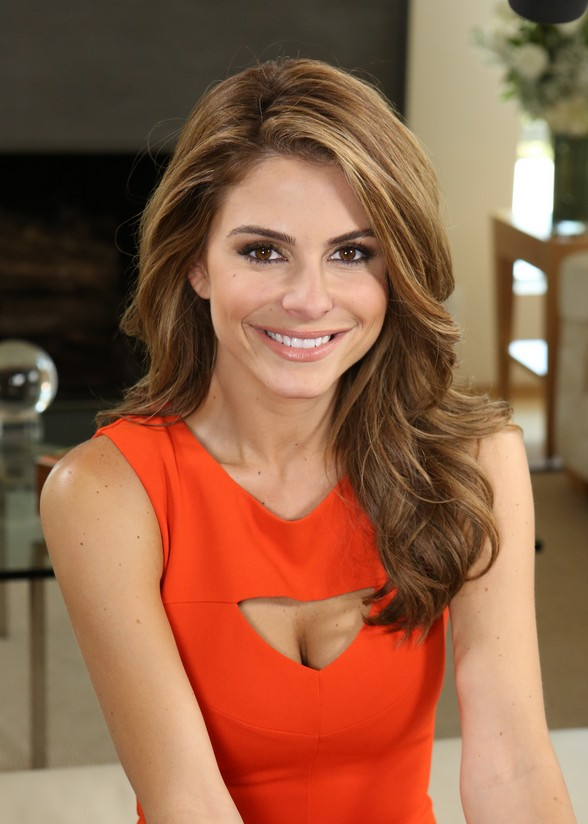 Maria Menounos Messy Hairstyle
