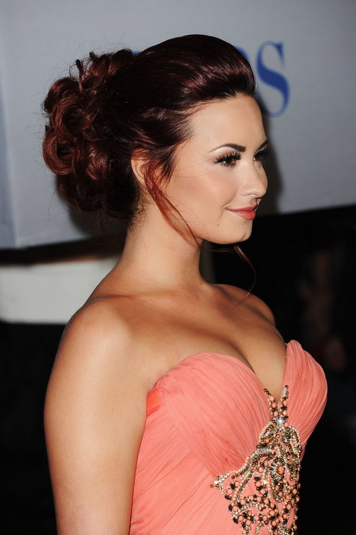 Demi Lovato Updo: Side View