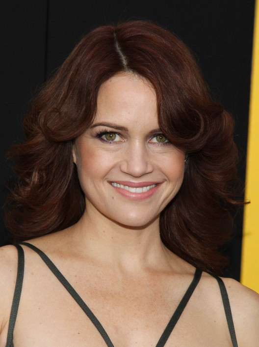 Carla Gugino 70s Brown Feathered Flip Hairstyle With Waves