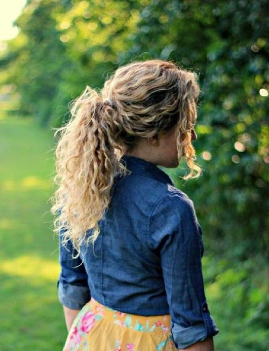 Easy Hairstyles for Curly Hair The Ponytail