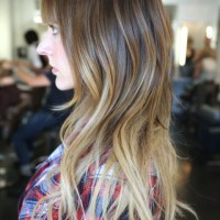 Side View of Pretty Brown to Blonde Ombre Hair for Long Sleek Hair