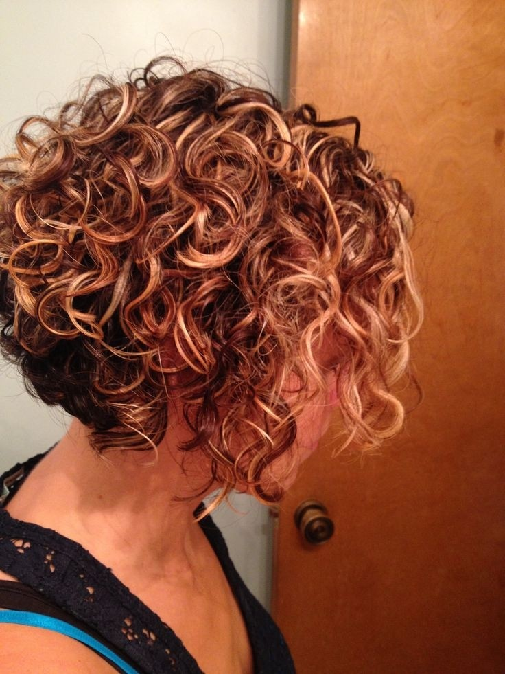 Hairstyles For Short Curly Hair Videos : 21 Lively Short Haircuts for Curly Hair Styles Weekly