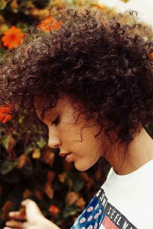 Surprising 12 Pretty Short Curly Hairstyles For Black Women Styles Weekly Short Hairstyles Gunalazisus