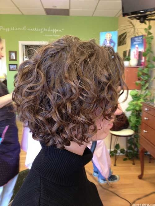 21 Lively Short Haircuts for Curly Hair | Styles Weekly