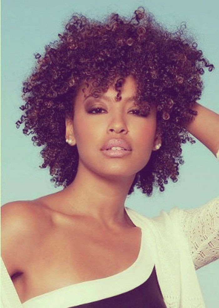 Natural Short Curly Hairstyle - Short Hair Styles for Black Women