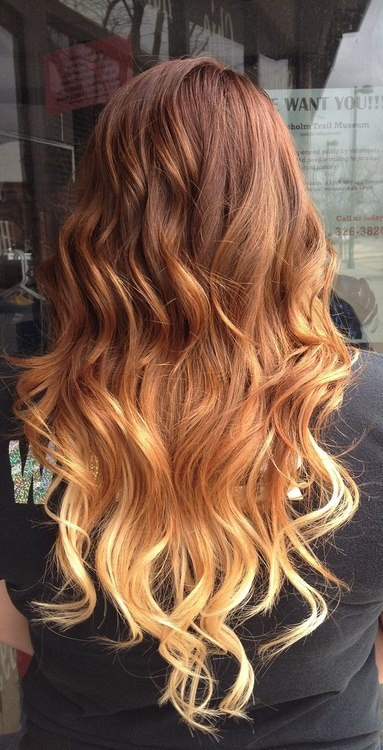 Light Brown Hair Ombre Pretty Brown to Blonde Ombre