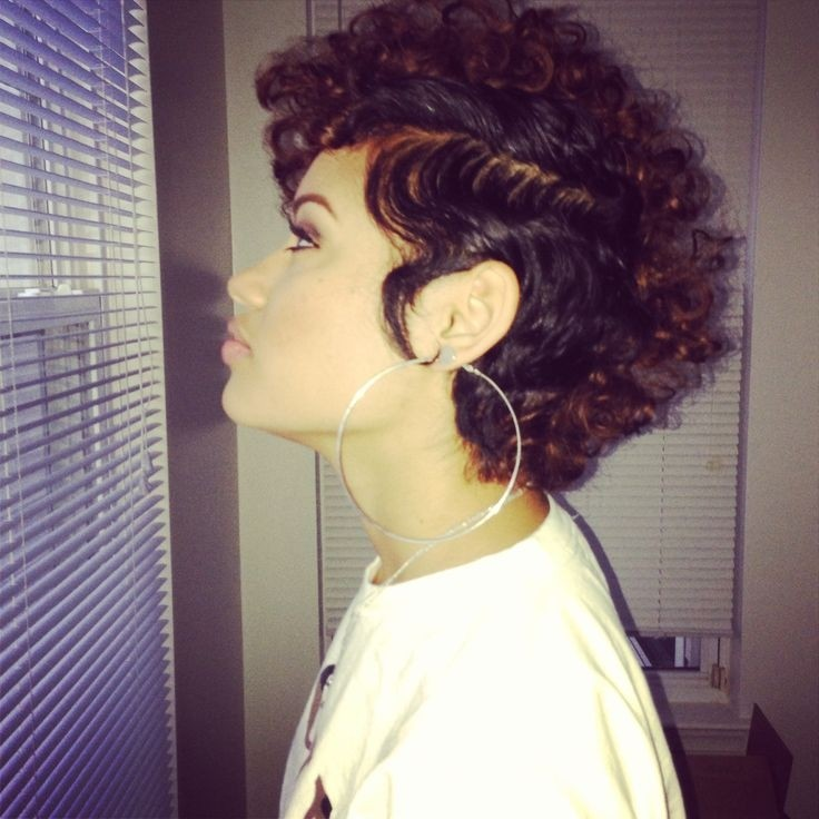 Stupendous 12 Pretty Short Curly Hairstyles For Black Women Styles Weekly Hairstyles For Men Maxibearus