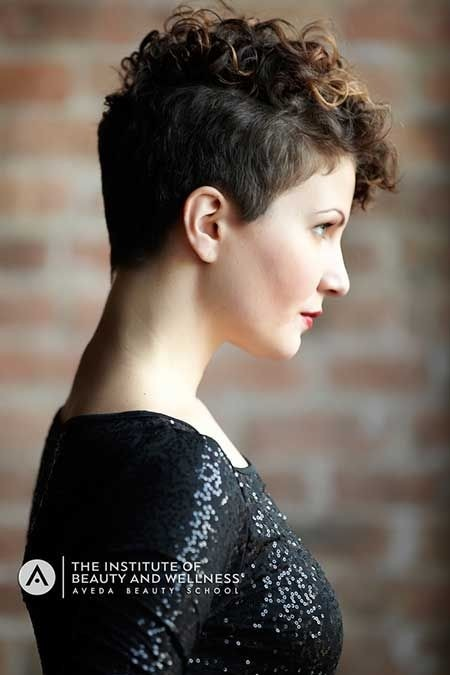 Awe Inspiring 21 Lively Short Haircuts For Curly Hair Styles Weekly Short Hairstyles For Black Women Fulllsitofus