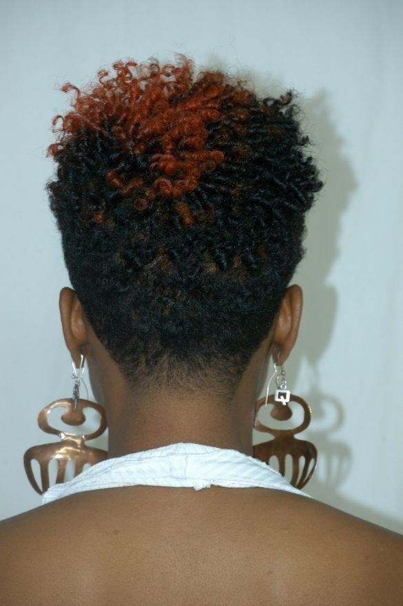 Natural Twist Pixie Hairstyles Back View
