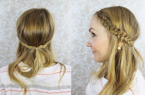 Pretty Half Updo Hairstyle with Dutch Braids